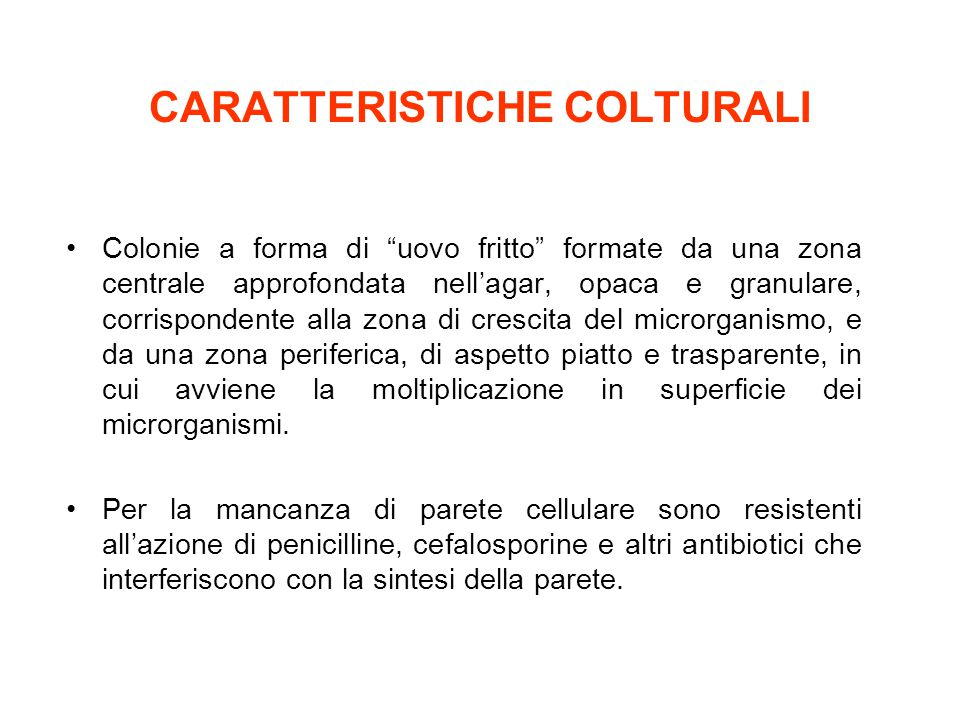 CARATTERISTICHE COLTURALI