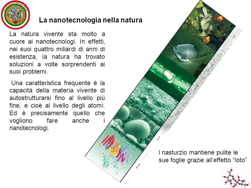 La nanotecnologia nella natura