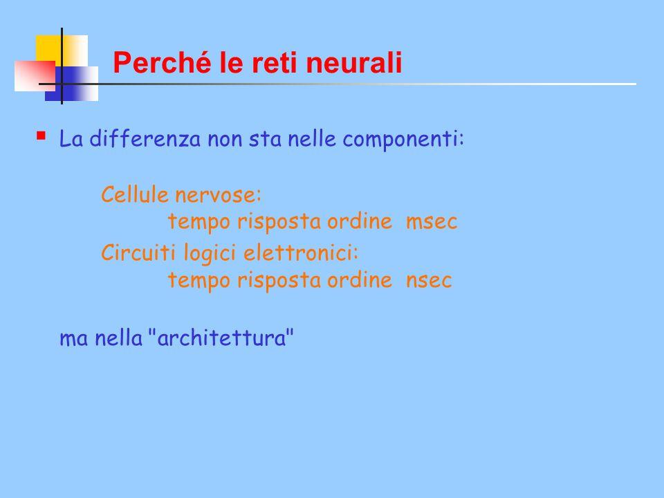 Perché le reti neurali La differenza non sta nelle componenti: