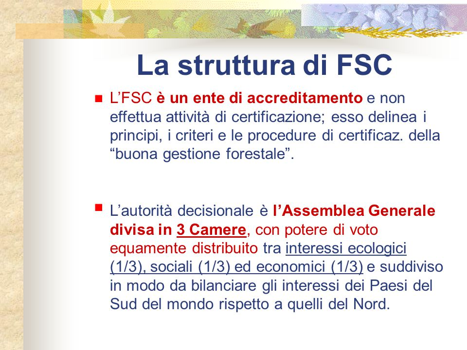 La struttura di FSC