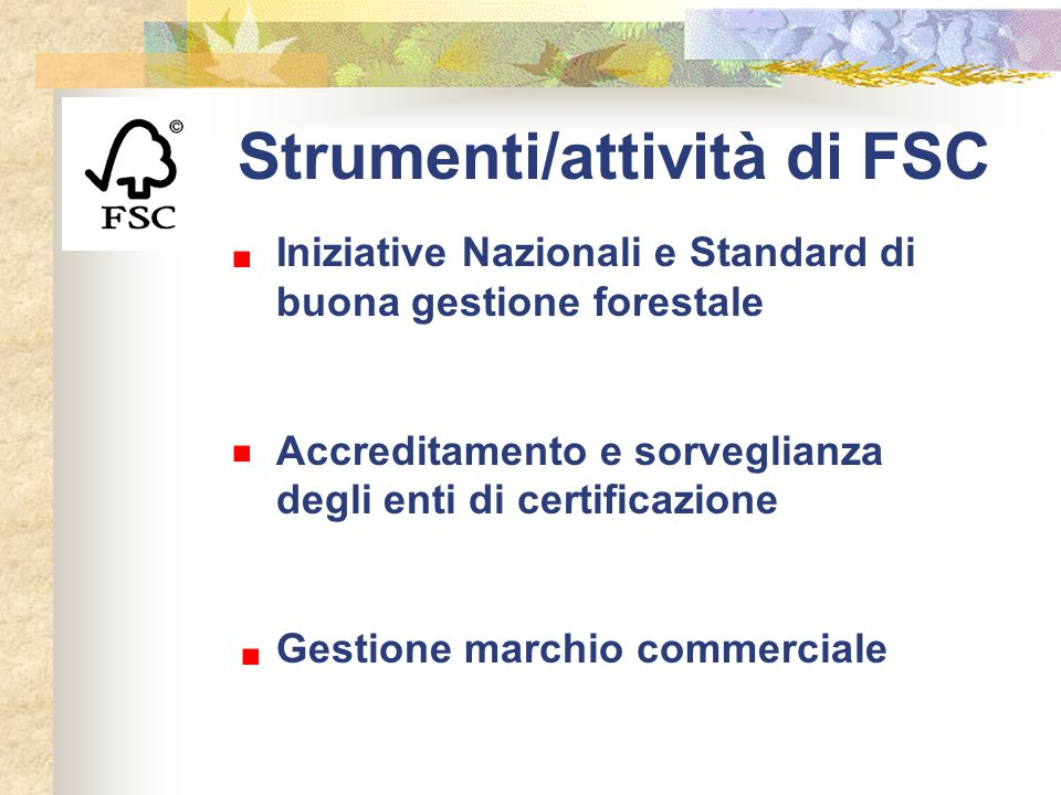 Strumenti/attività di FSC