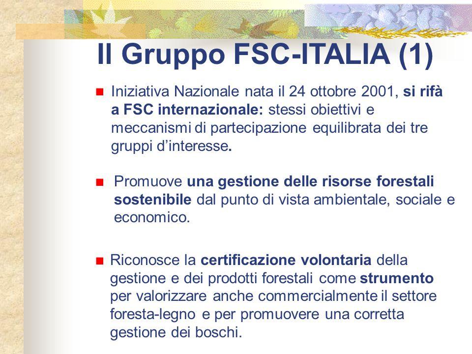 Il Gruppo FSC-ITALIA (1)