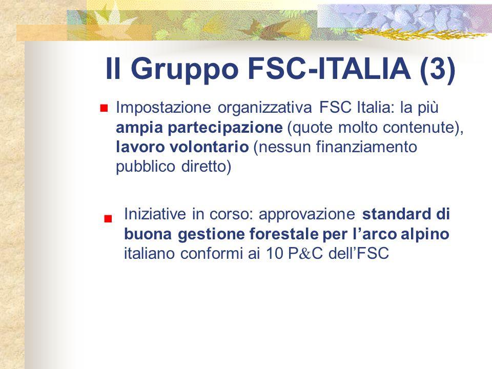Il Gruppo FSC-ITALIA (3)