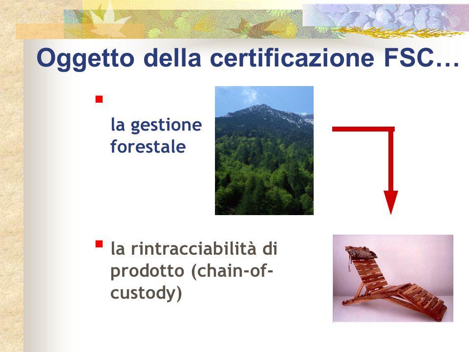 Oggetto della certificazione FSC…