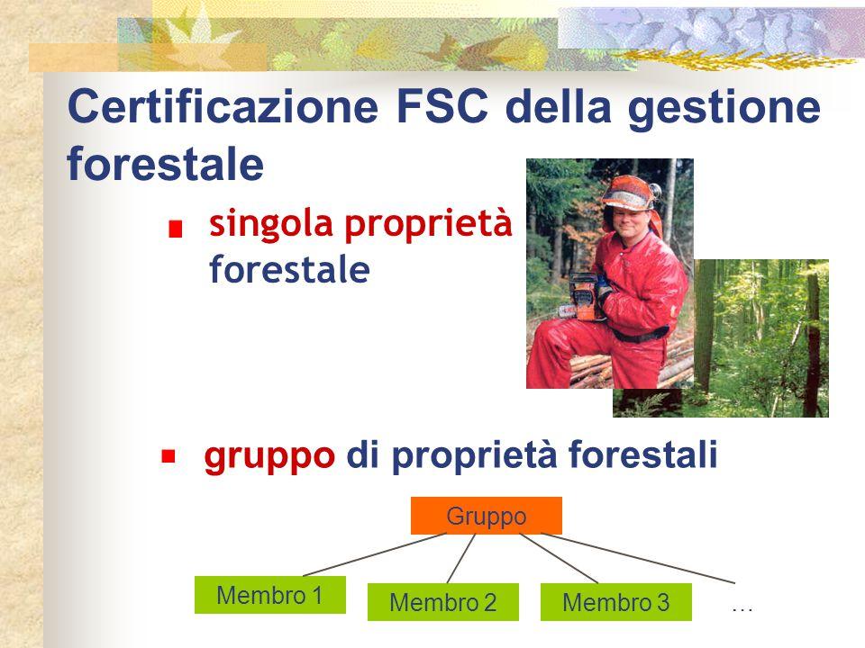 Certificazione FSC della gestione forestale