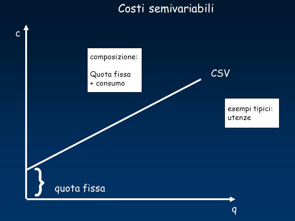 } Costi semivariabili c CSV quota fissa q composizione: Quota fissa
