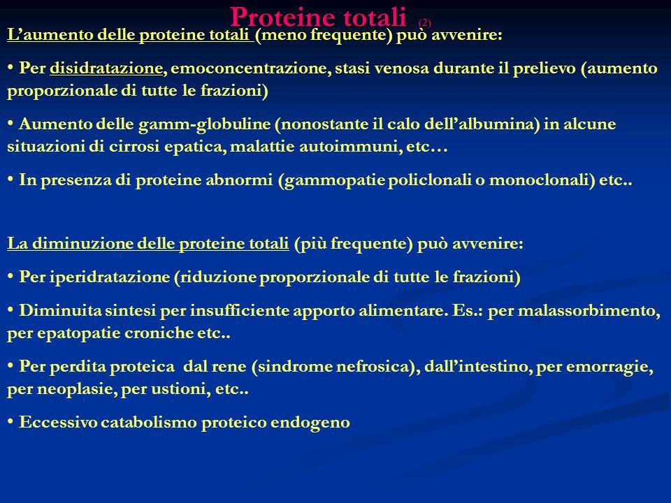 Proteine totali (2) L'aumento delle proteine totali (meno frequente) può avvenire: