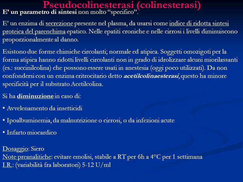 Pseudocolinesterasi (colinesterasi)