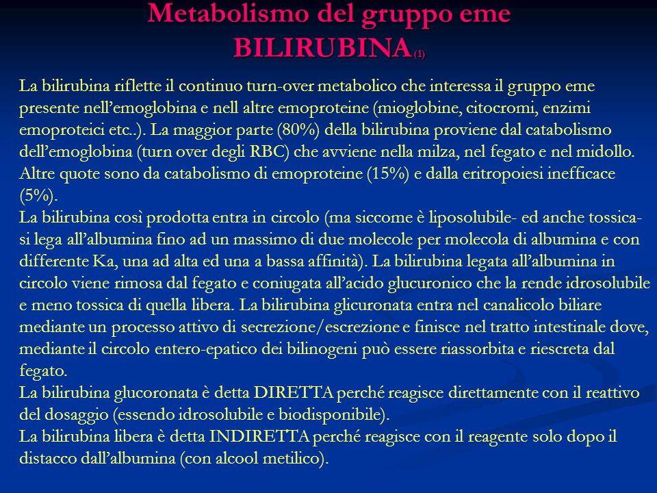 Metabolismo del gruppo eme BILIRUBINA (1)