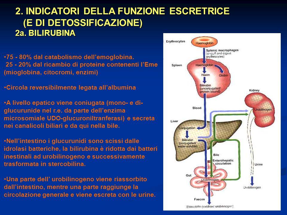 2. INDICATORI DELLA FUNZIONE ESCRETRICE (E DI DETOSSIFICAZIONE)