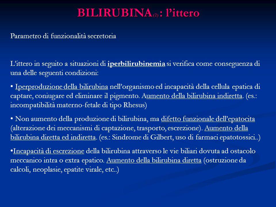 BILIRUBINA (2) : l'ittero
