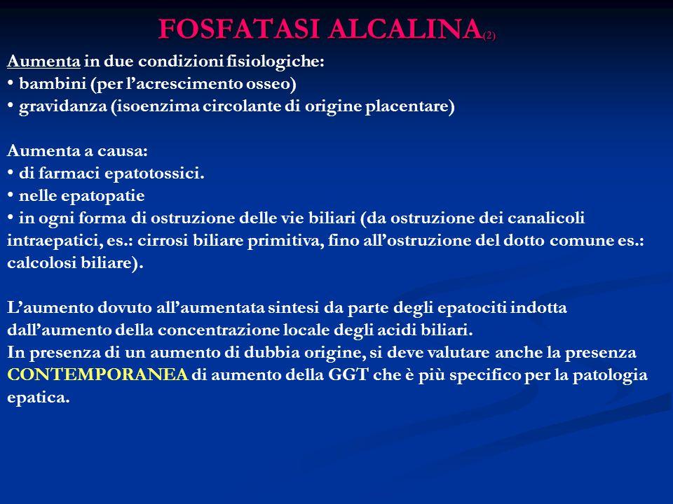 FOSFATASI ALCALINA(2) Aumenta in due condizioni fisiologiche: