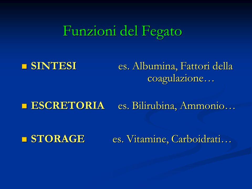 Funzioni del Fegato SINTESI es. Albumina, Fattori della coagulazione…