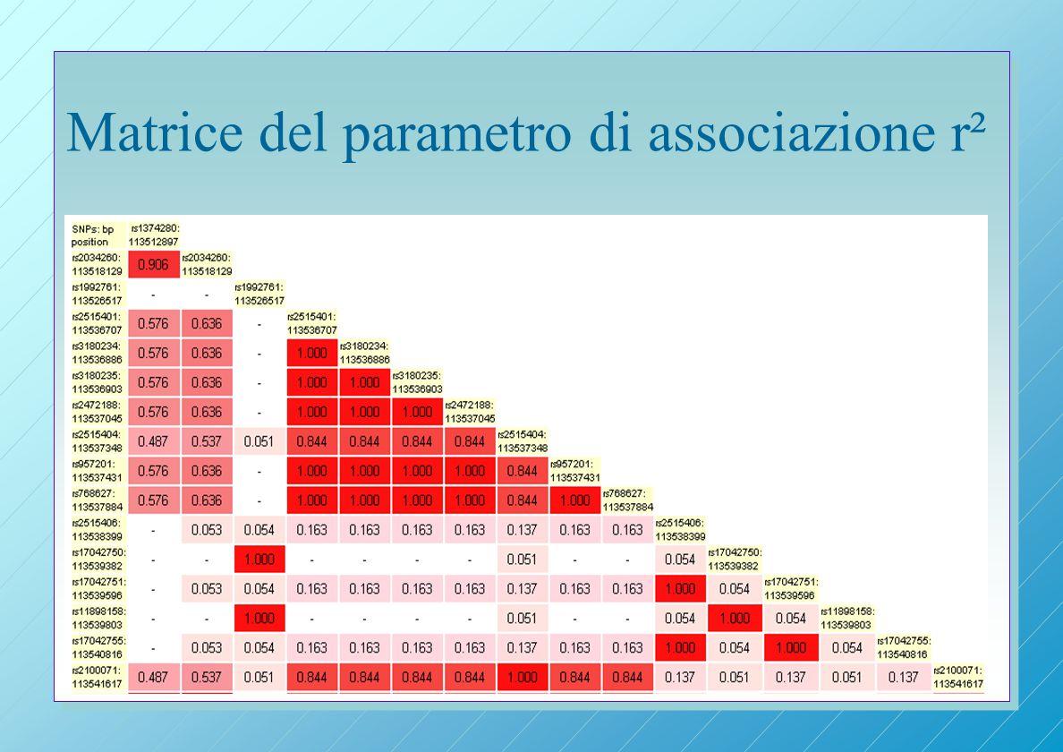 Matrice del parametro di associazione r²