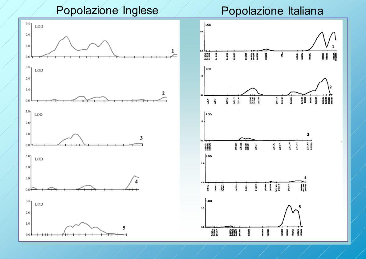 Popolazione Inglese Popolazione Italiana
