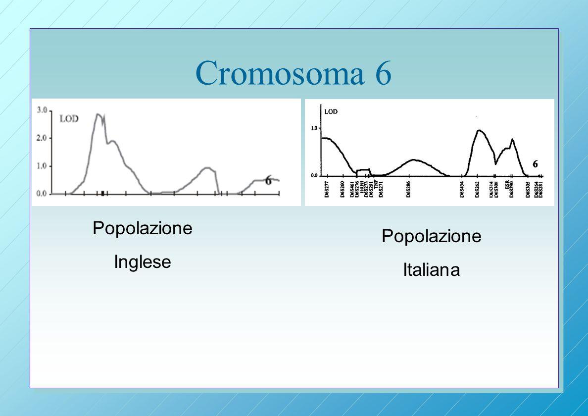 Cromosoma 6 Popolazione Inglese Popolazione Italiana