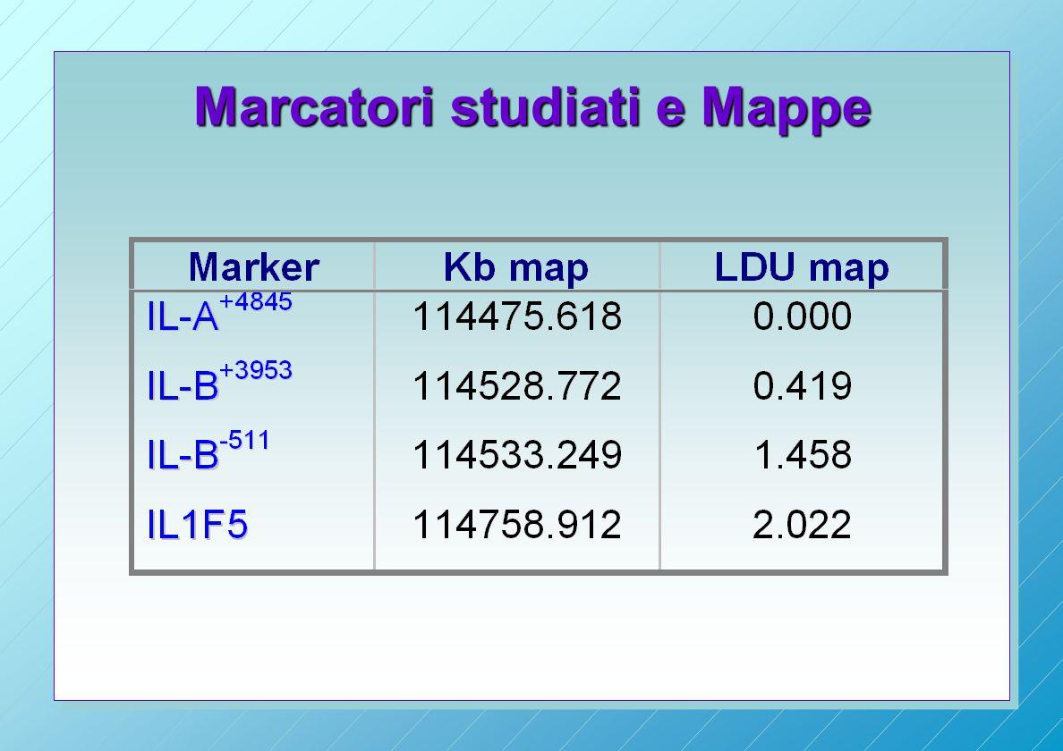 Marcatori studiati e Mappe