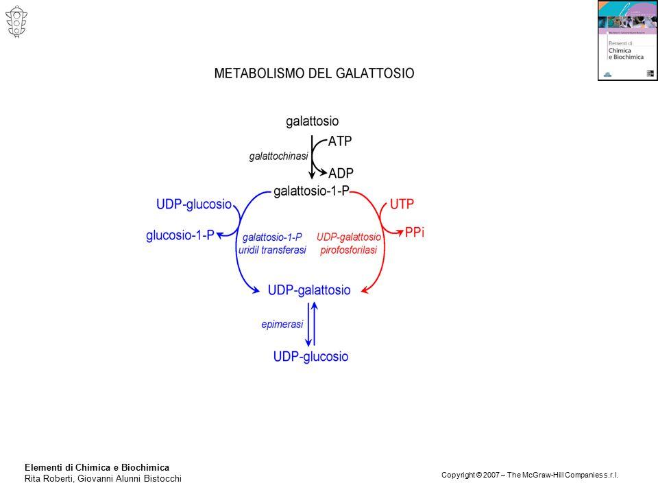 Elementi di Chimica e Biochimica