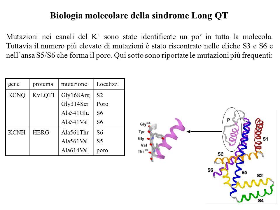 Biologia molecolare della sindrome Long QT