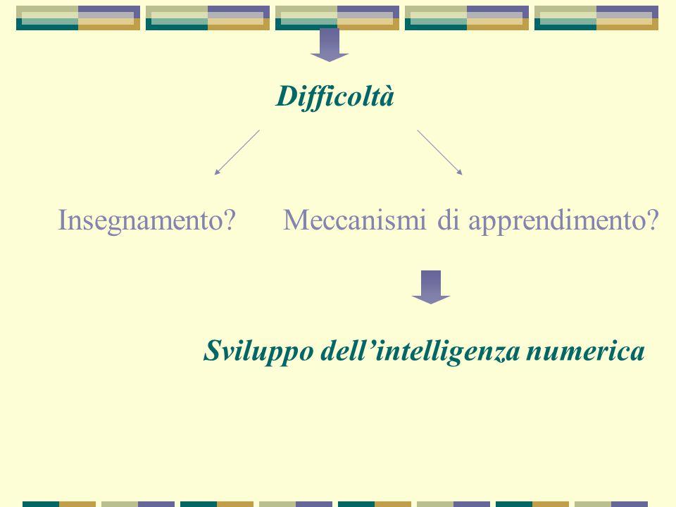 Difficoltà Insegnamento Meccanismi di apprendimento Sviluppo dell'intelligenza numerica