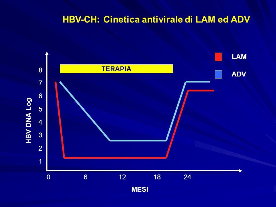 HBV-CH: Cinetica antivirale di LAM ed ADV