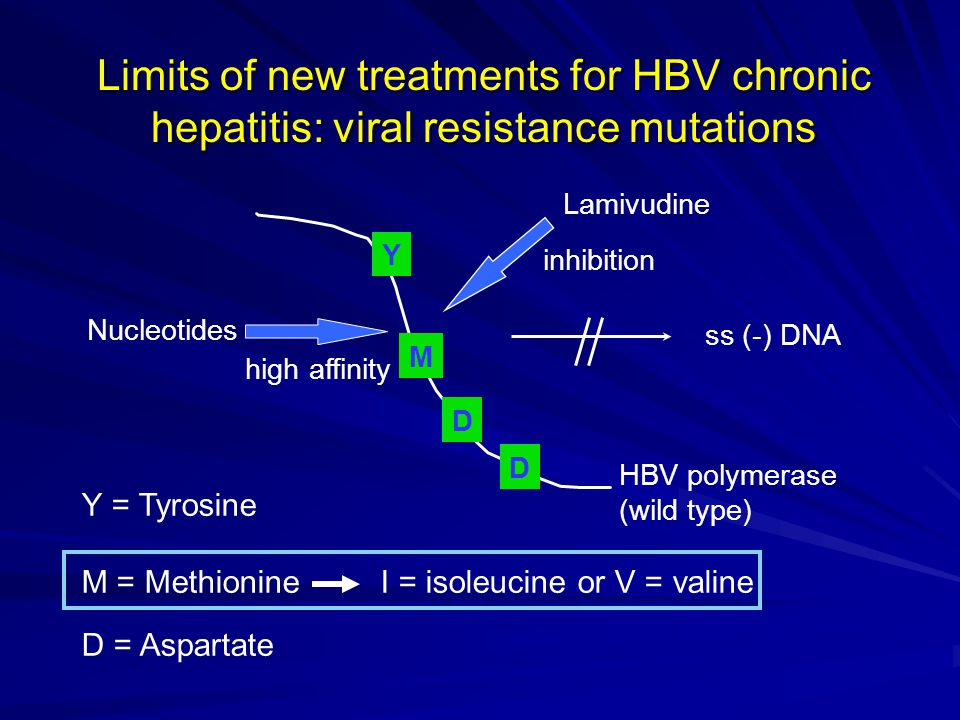 Limits of new treatments for HBV chronic hepatitis: viral resistance mutations