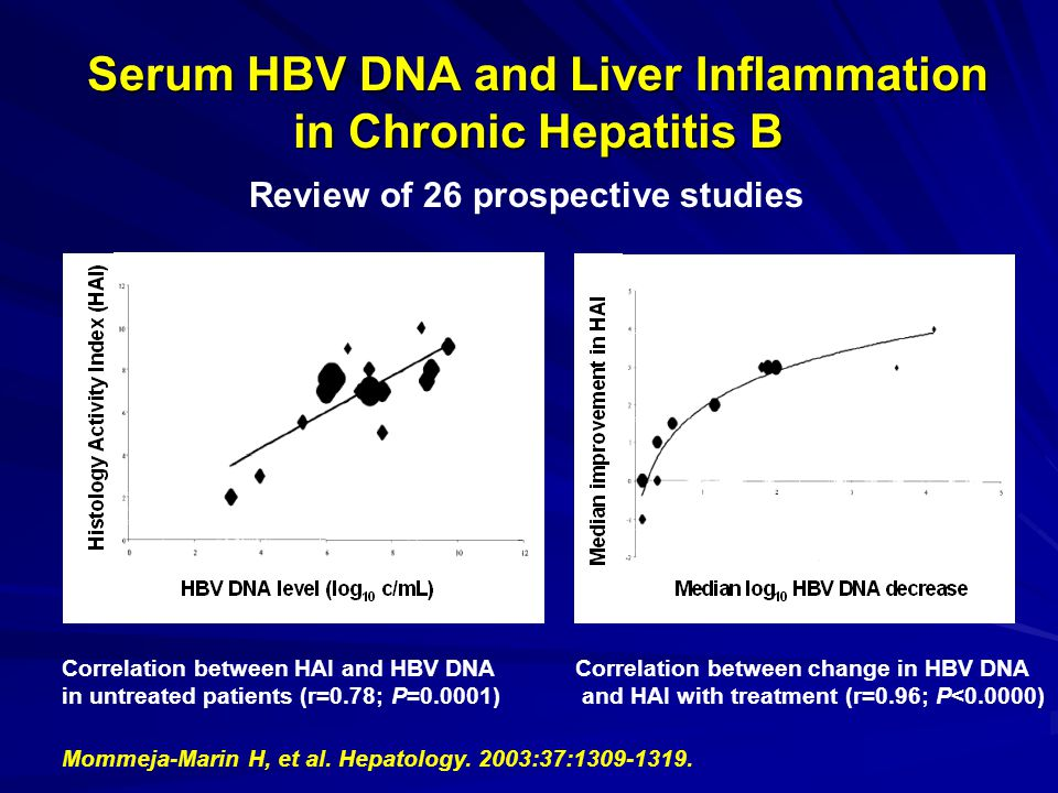 Serum HBV DNA and Liver Inflammation in Chronic Hepatitis B