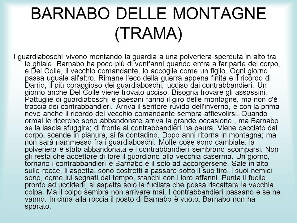 BARNABO DELLE MONTAGNE (TRAMA)