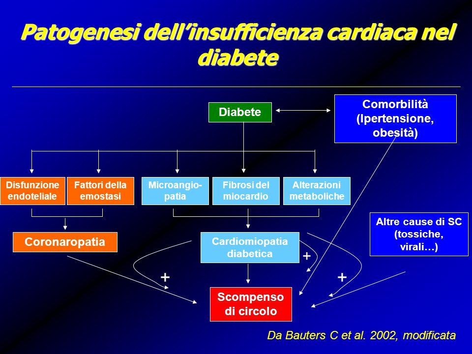 Patogenesi dell'insufficienza cardiaca nel diabete