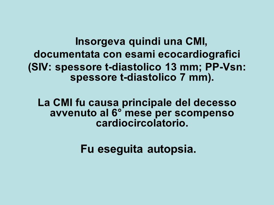 Insorgeva quindi una CMI, documentata con esami ecocardiografici