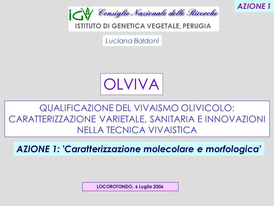 OLVIVA QUALIFICAZIONE DEL VIVAISMO OLIVICOLO: