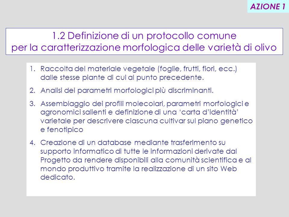 1.2 Definizione di un protocollo comune