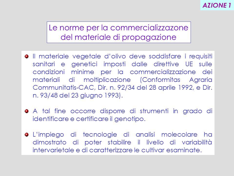 Le norme per la commercializzazone del materiale di propagazione