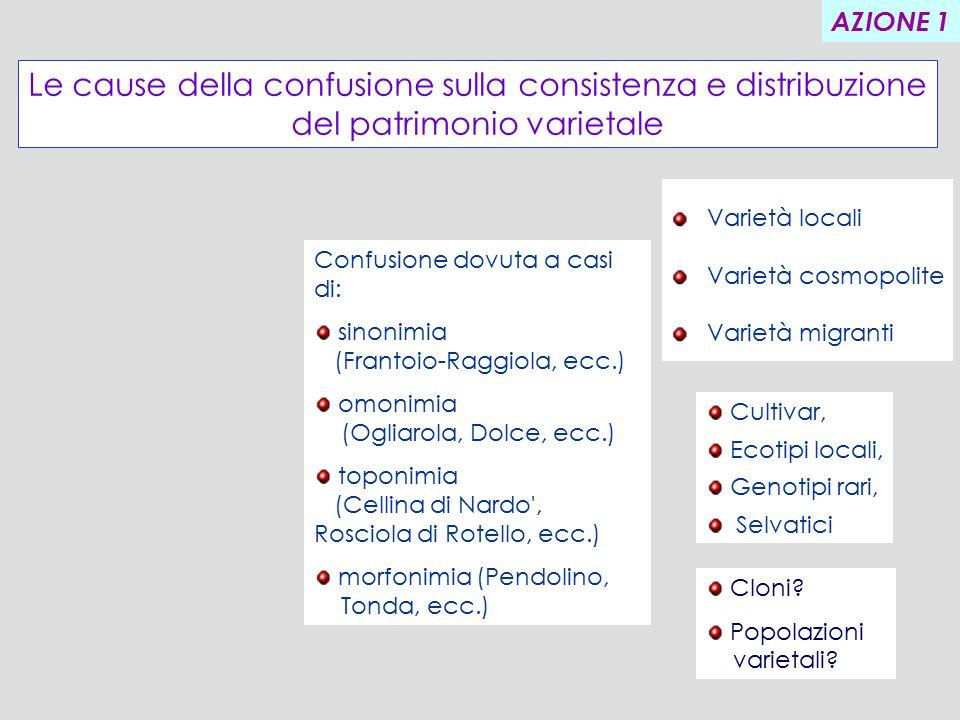 Le cause della confusione sulla consistenza e distribuzione