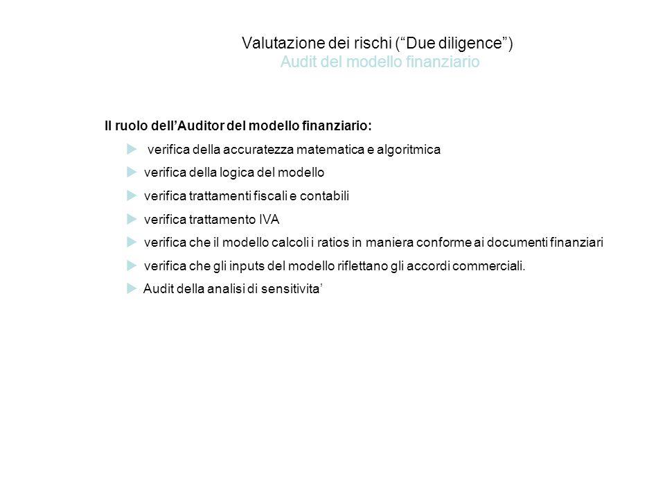 Valutazione dei rischi ( Due diligence ) Audit del modello finanziario