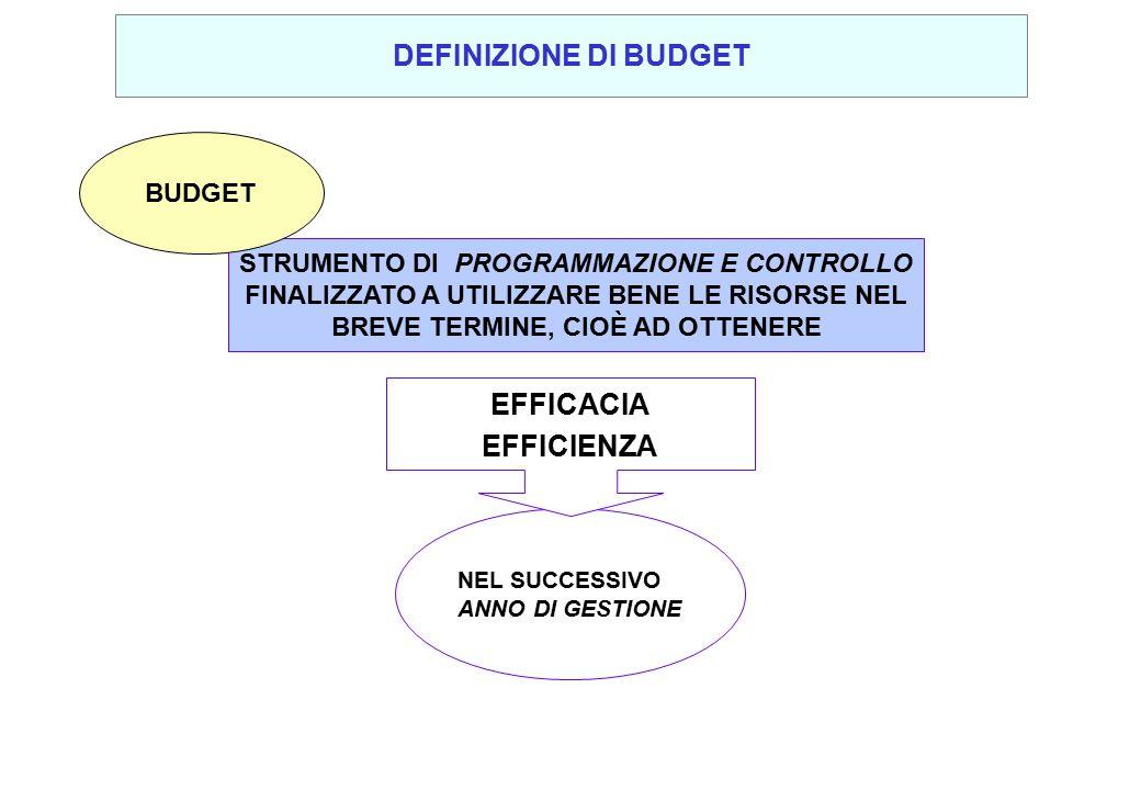 DEFINIZIONE DI BUDGET EFFICACIA EFFICIENZA
