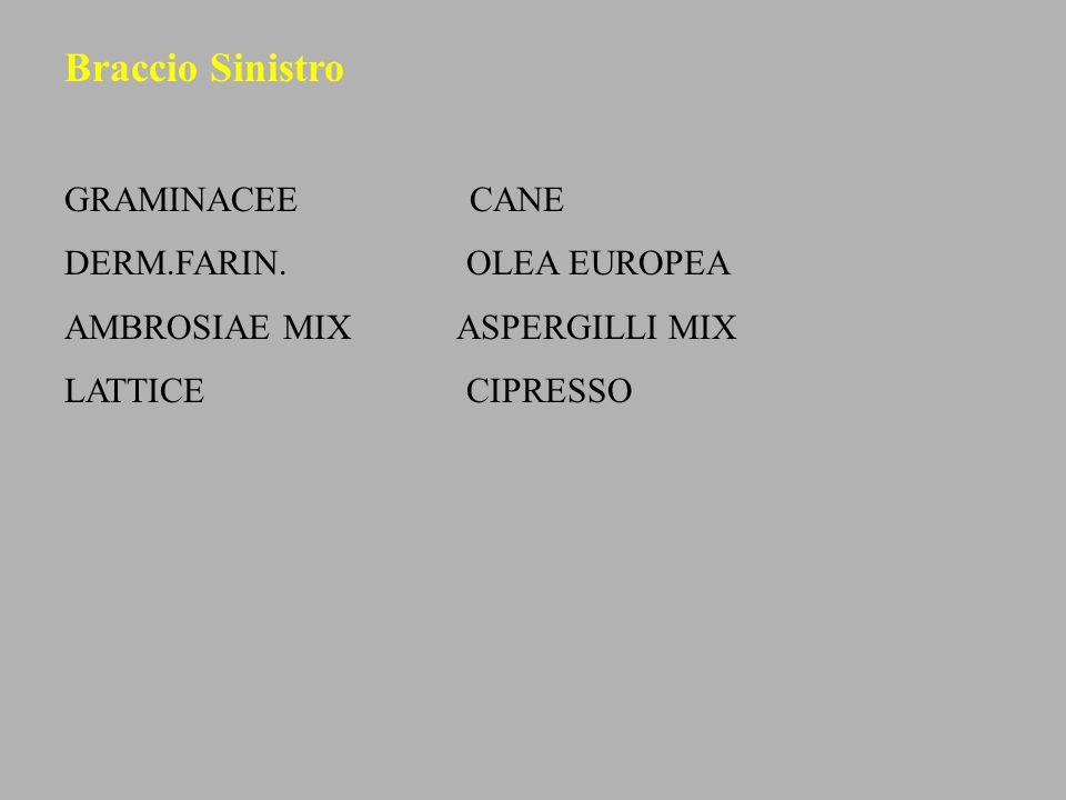 Braccio Sinistro GRAMINACEE CANE DERM.FARIN. OLEA EUROPEA
