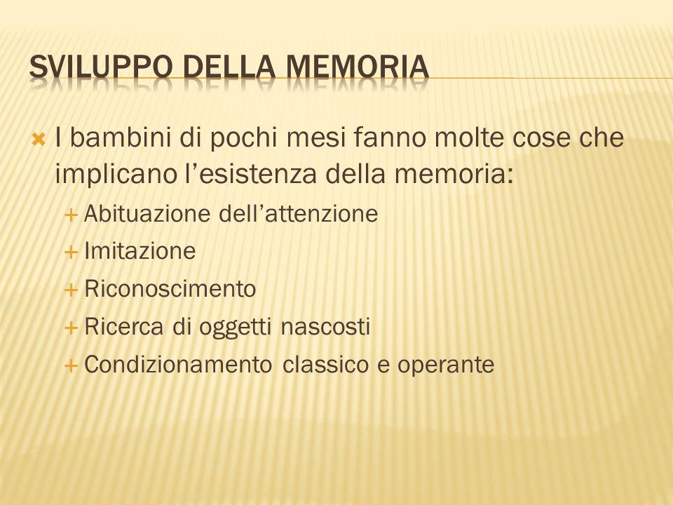 Sviluppo della memoria