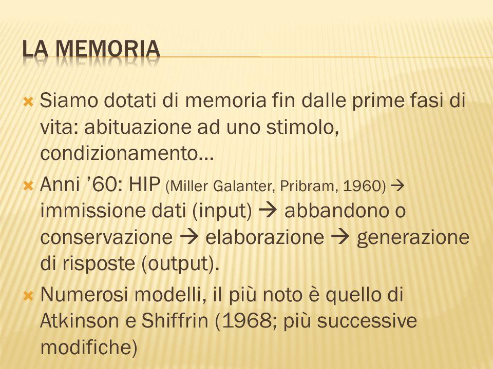 La memoria Siamo dotati di memoria fin dalle prime fasi di vita: abituazione ad uno stimolo, condizionamento…