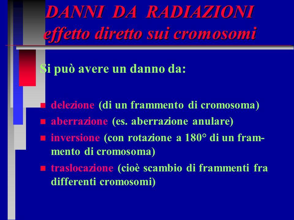 DANNI DA RADIAZIONI effetto diretto sui cromosomi