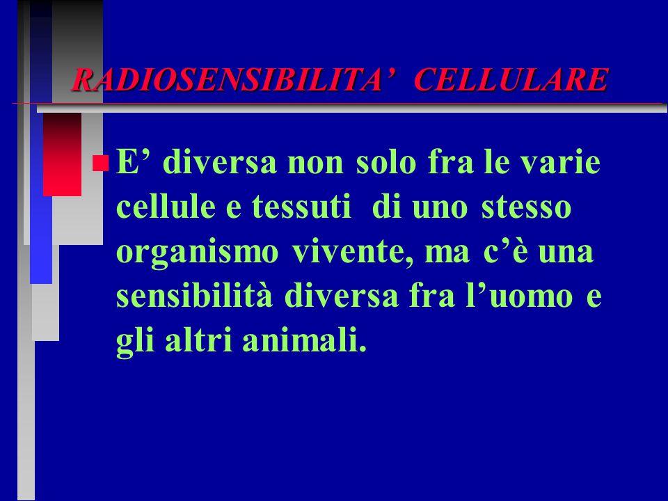 RADIOSENSIBILITA' CELLULARE
