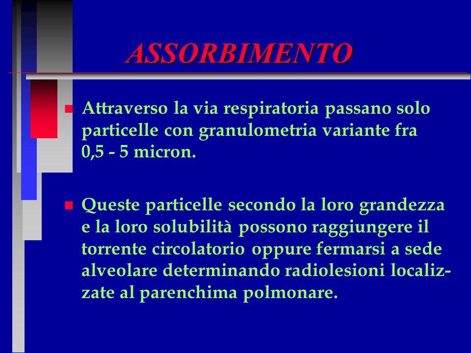 ASSORBIMENTO Attraverso la via respiratoria passano solo particelle con granulometria variante fra 0,5 - 5 micron.