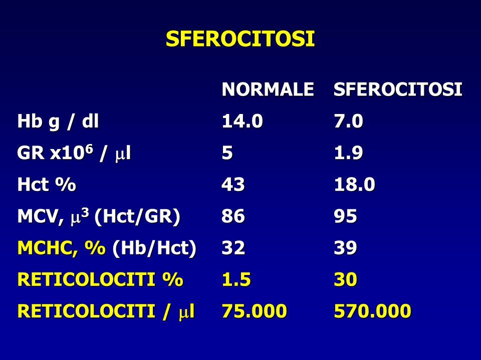 SFEROCITOSI NORMALE SFEROCITOSI Hb g / dl 14.0 7.0 GR x106 / l 5 1.9