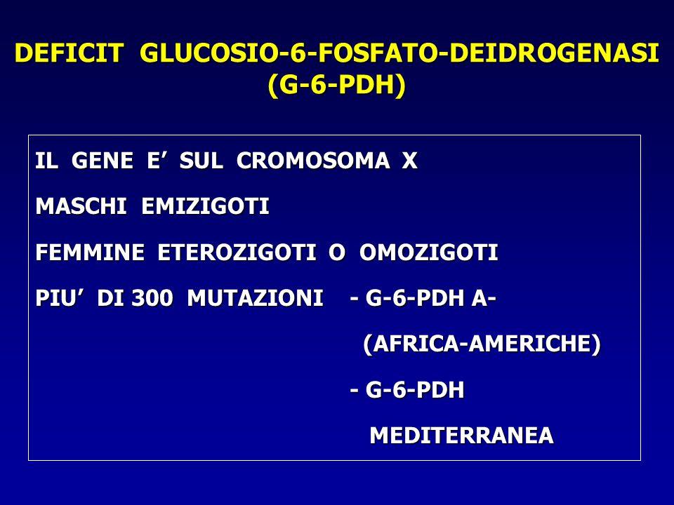 DEFICIT GLUCOSIO-6-FOSFATO-DEIDROGENASI (G-6-PDH)