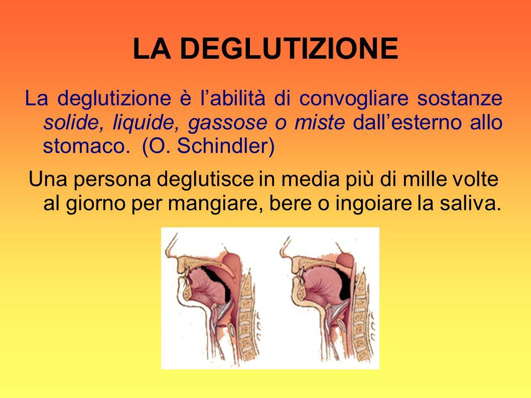 LA DEGLUTIZIONE La deglutizione è l'abilità di convogliare sostanze solide, liquide, gassose o miste dall'esterno allo stomaco. (O. Schindler)