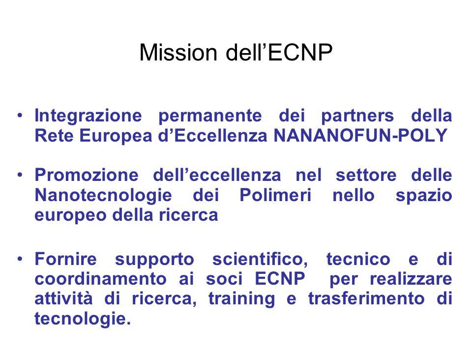 Mission dell'ECNP Integrazione permanente dei partners della Rete Europea d'Eccellenza NANANOFUN-POLY.