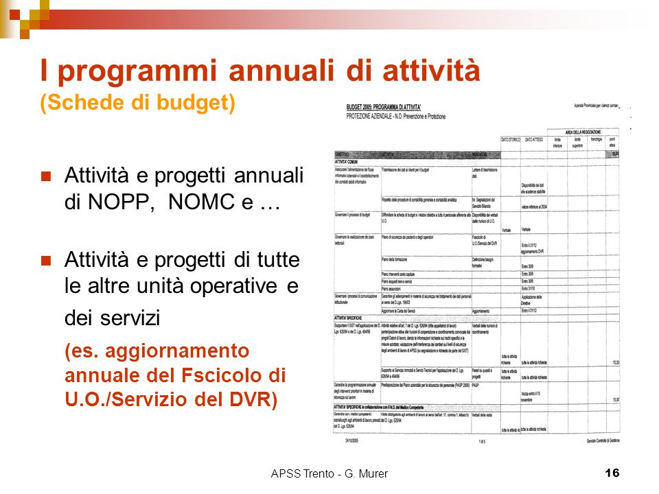 I programmi annuali di attività (Schede di budget)