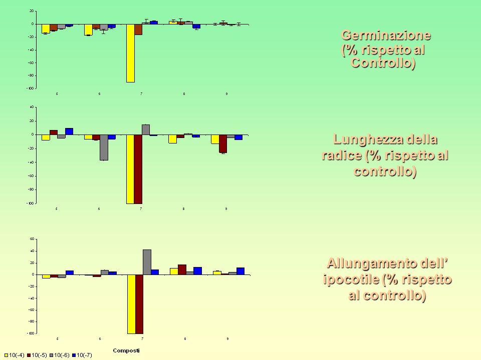 Lunghezza della radice (% rispetto al controllo)