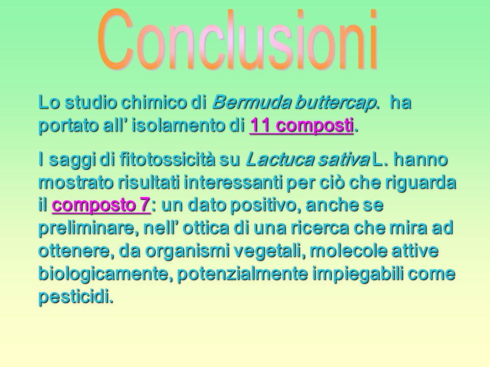 Conclusioni Lo studio chimico di Bermuda buttercap. ha portato all' isolamento di 11 composti.
