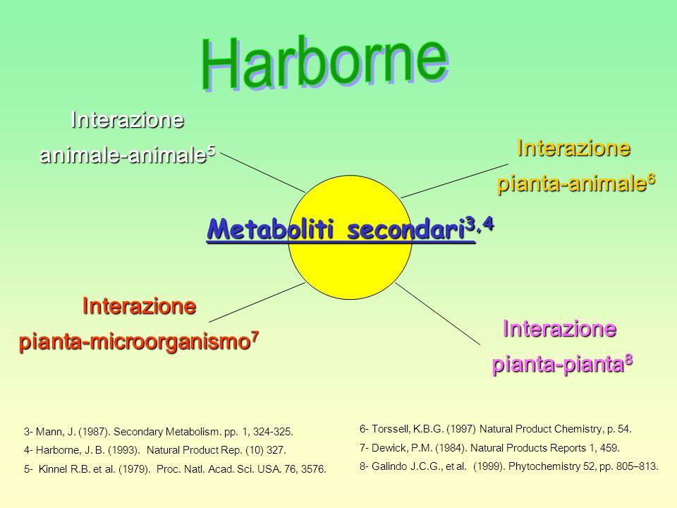 pianta-microorganismo7